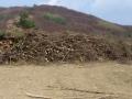biomasa_1_Juro