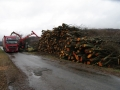 biomasa_NP_Poloniny